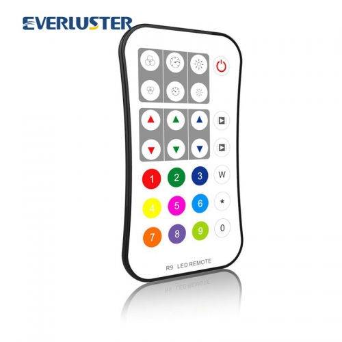 R9 Digital RGB remoter